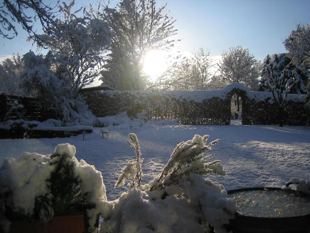 http://fewo-haus-gabriele.com/en/wp-content/ngg/files/fewo-haus-gabriele_1/WinterBack.jpg